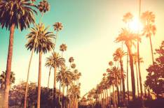 sunset-boulevard-los-angeles-estados-unidos