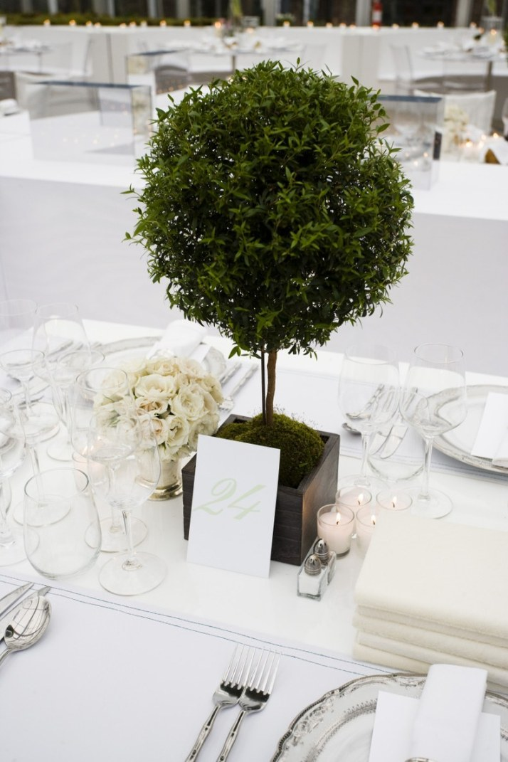 wedding-topiary-6